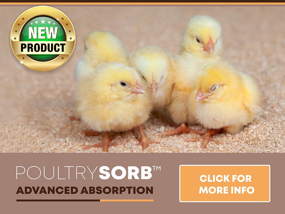 Poultrysorb